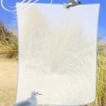 papier à lettre mer